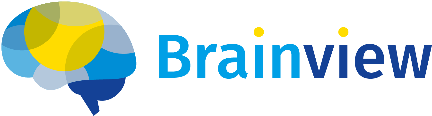Brainview Logo